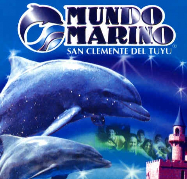 DIA INOLVIDABLE EN MUNDO MARINO -  - Village Tour